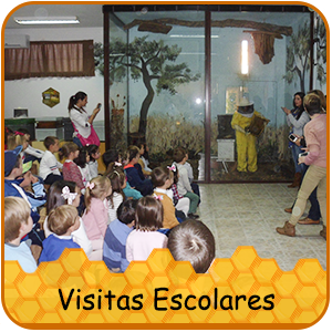 visitasescolares.png
